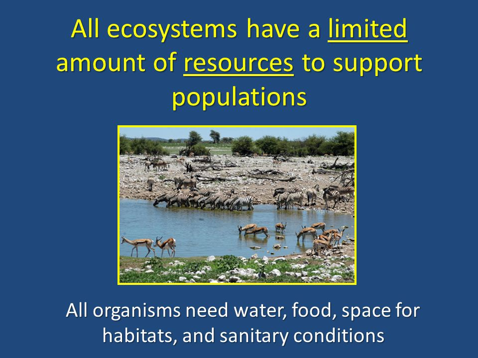All ecosystems have a limited amount of resources to support populations