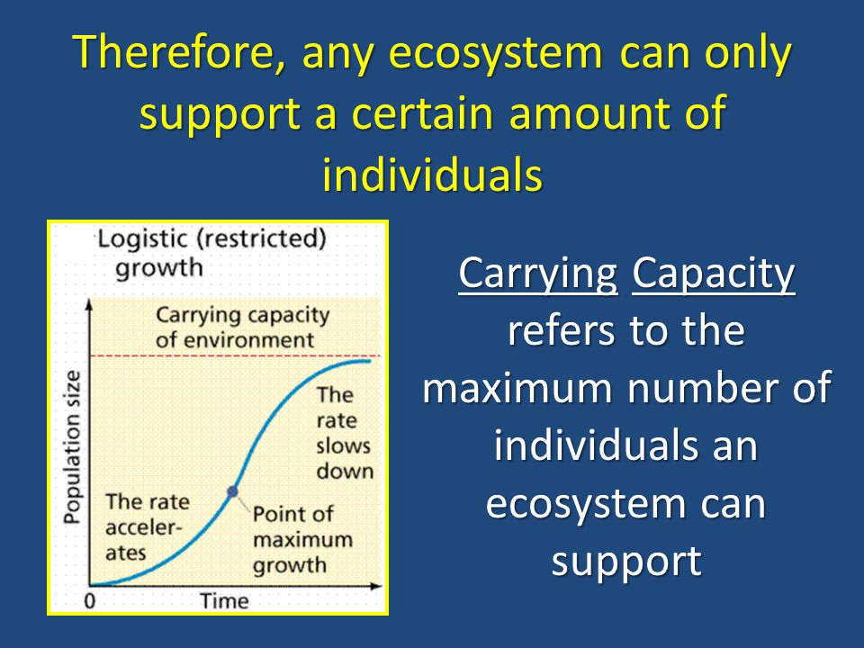 Therefore, any ecosystem can only support a certain amount of individuals