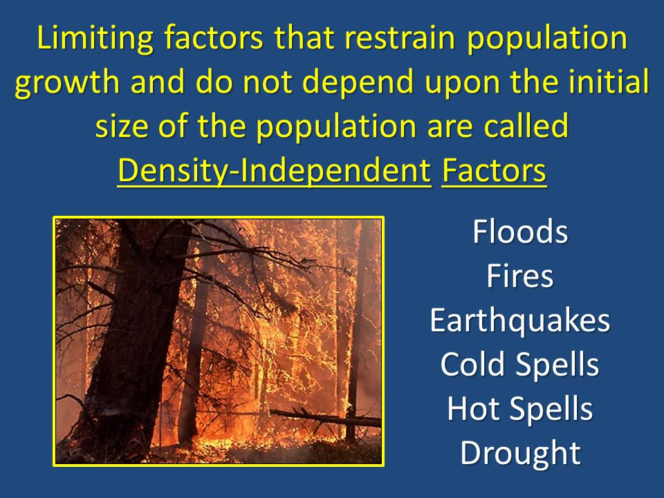 Limiting factors that restrain population growth and do not depend upon the initial size of the population are called Density-Independent Factors
