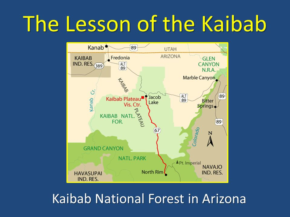 The Lesson of the Kaibab