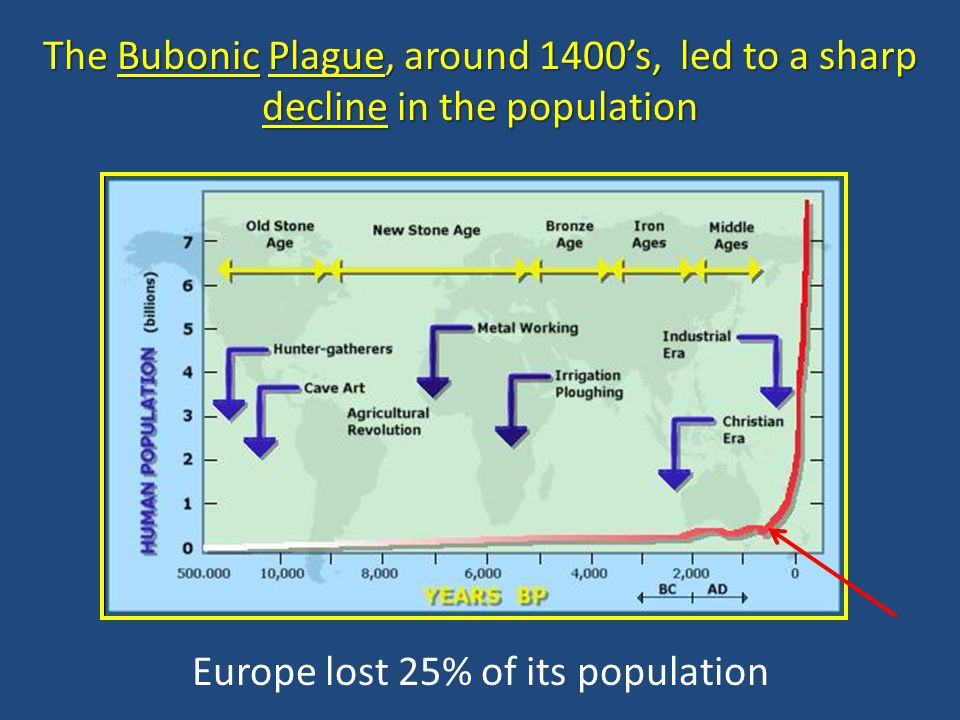 Europe lost 25% of its population