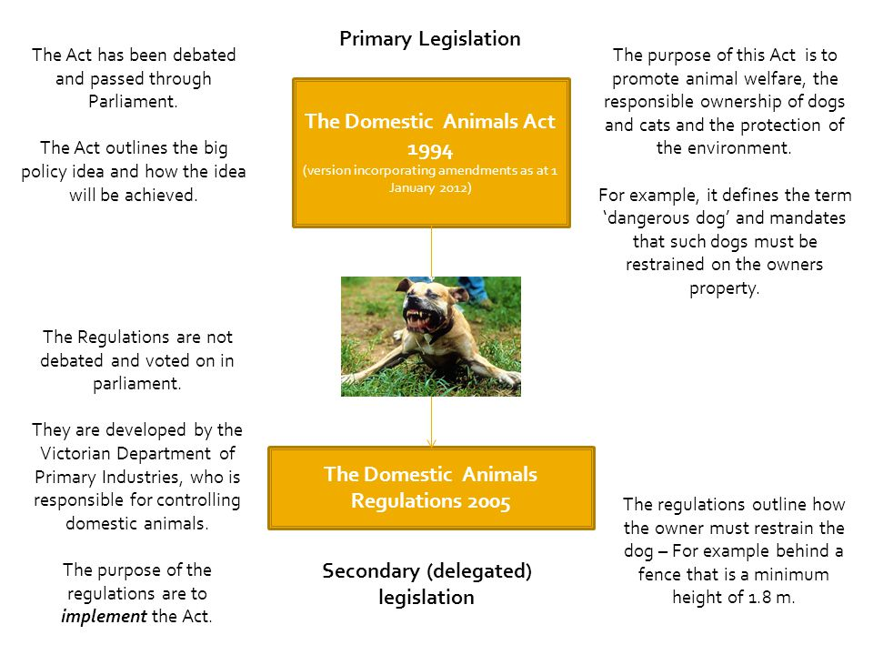 The Domestic Animals Act 1994
