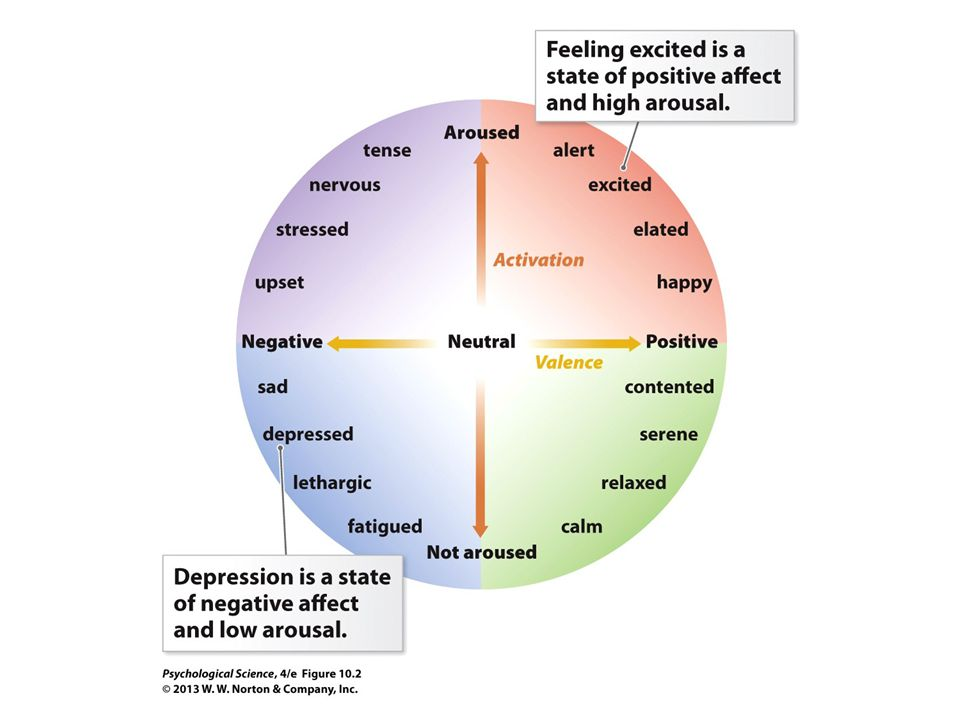 FIGURE 10.2 Circumplex Map of Emotion