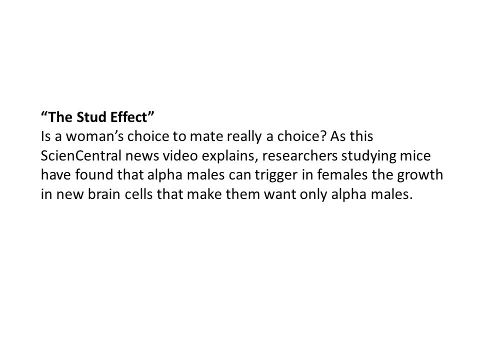The Stud Effect