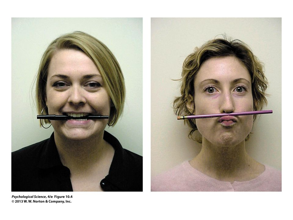 FIGURE 10.4 Facial Feedback Hypothesis