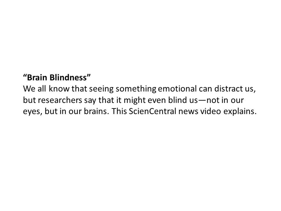 Brain Blindness