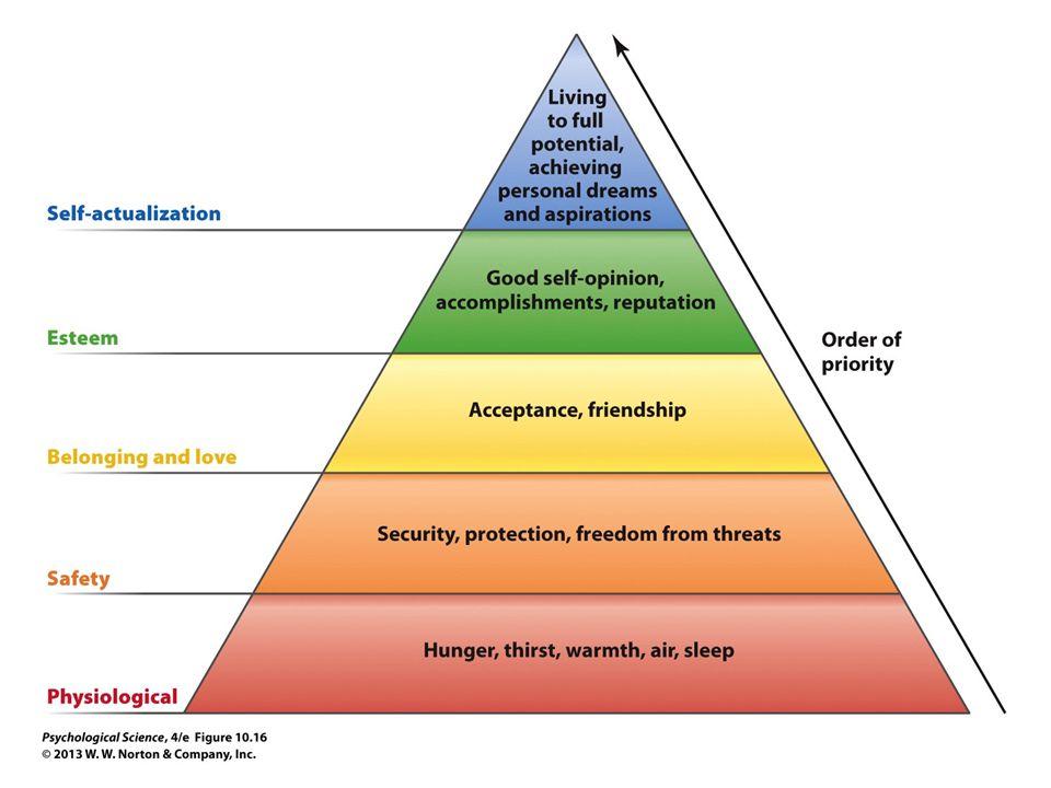 FIGURE 10.16 Need Hierarchy
