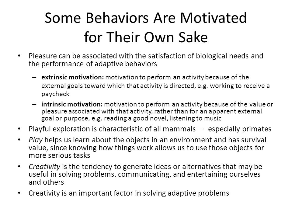 Some Behaviors Are Motivated for Their Own Sake