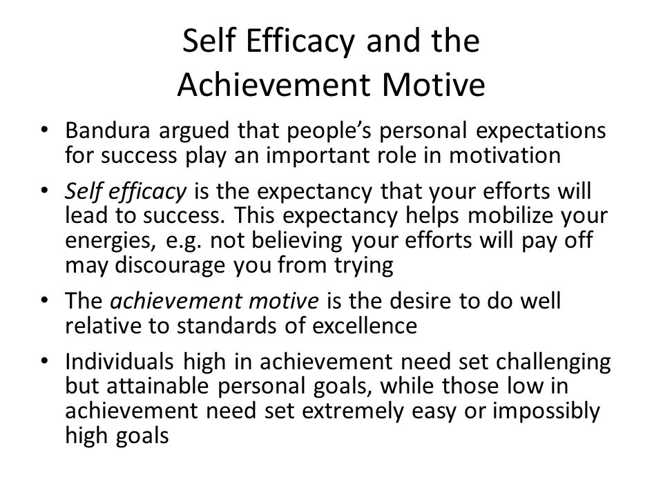 Self Efficacy and the Achievement Motive