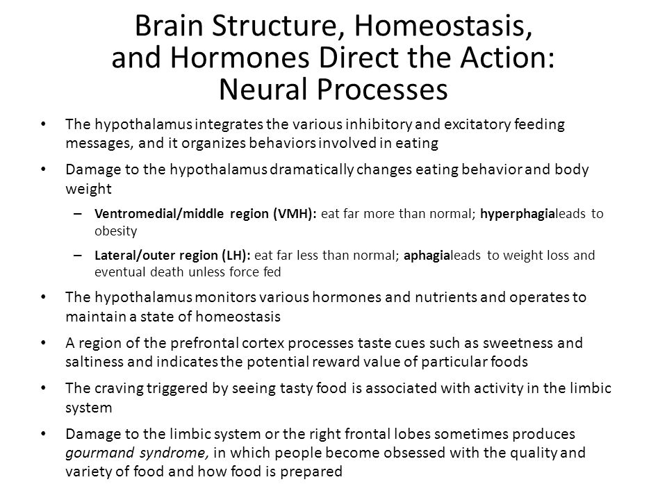 Brain Structure, Homeostasis, and Hormones Direct the Action: Neural Processes