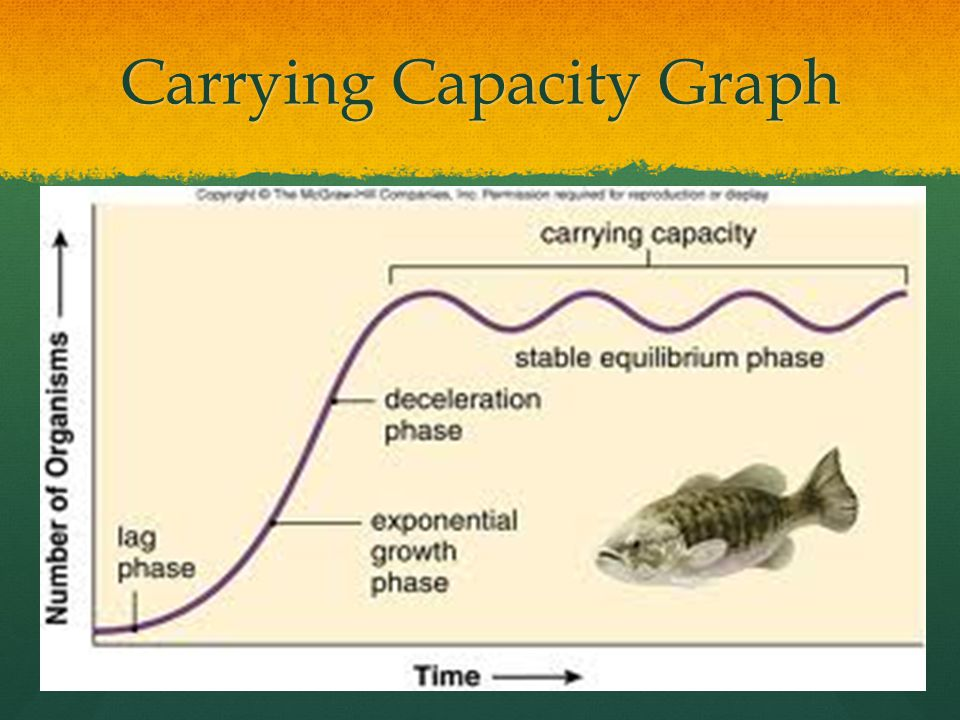 Carrying Capacity Graph