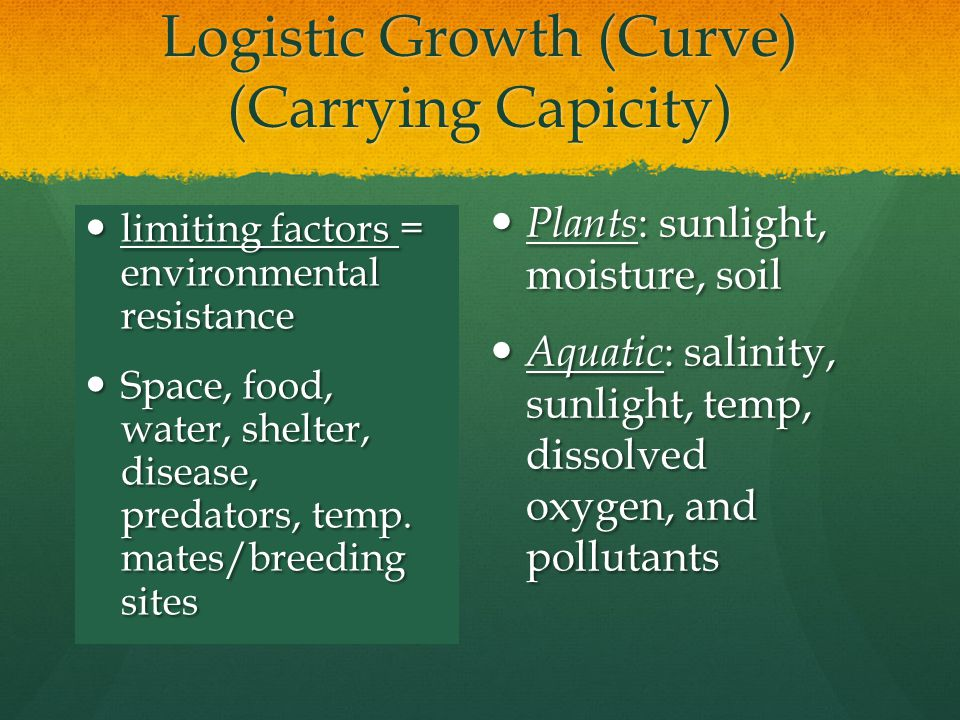 Logistic Growth (Curve) (Carrying Capicity)