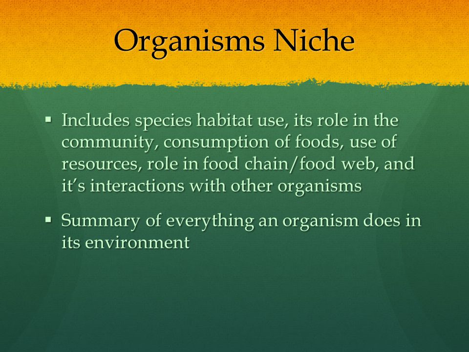 Organisms Niche