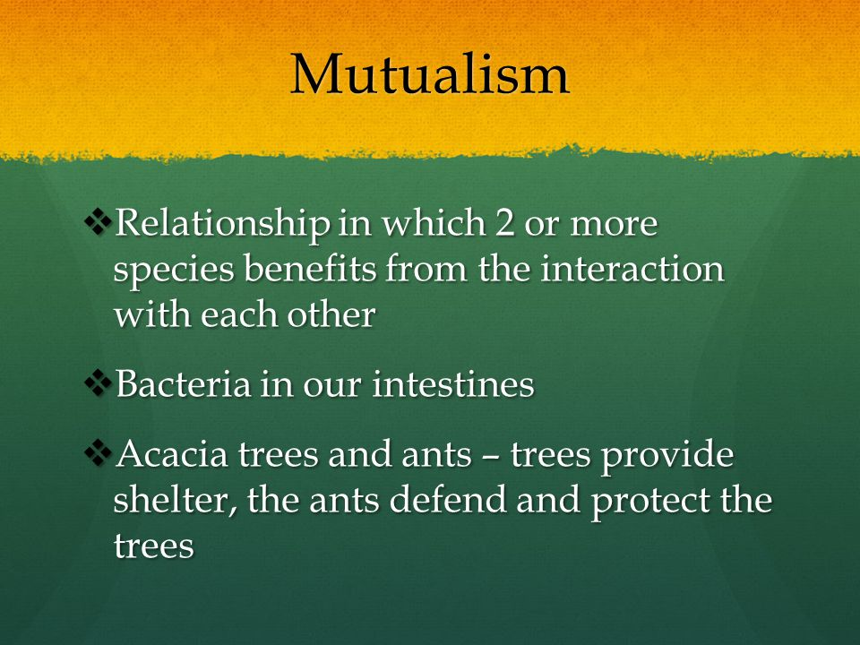 Mutualism Relationship in which 2 or more species benefits from the interaction with each other. Bacteria in our intestines.