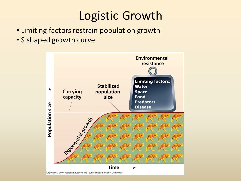 Logistic Growth Limiting factors restrain population growth