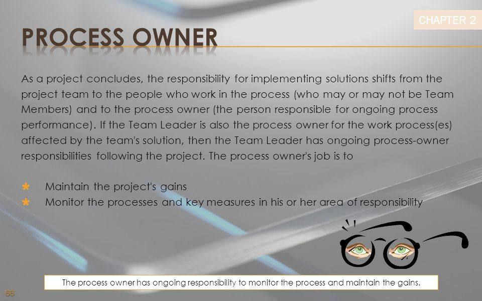 Process owner