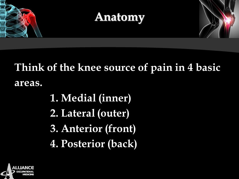 Anatomy Think of the knee source of pain in 4 basic areas.