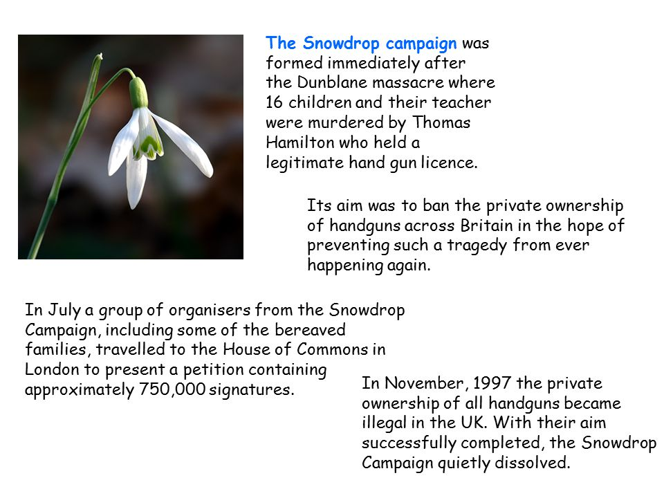 The Snowdrop campaign was formed immediately after the Dunblane massacre where 16 children and their teacher were murdered by Thomas Hamilton who held a legitimate hand gun licence.