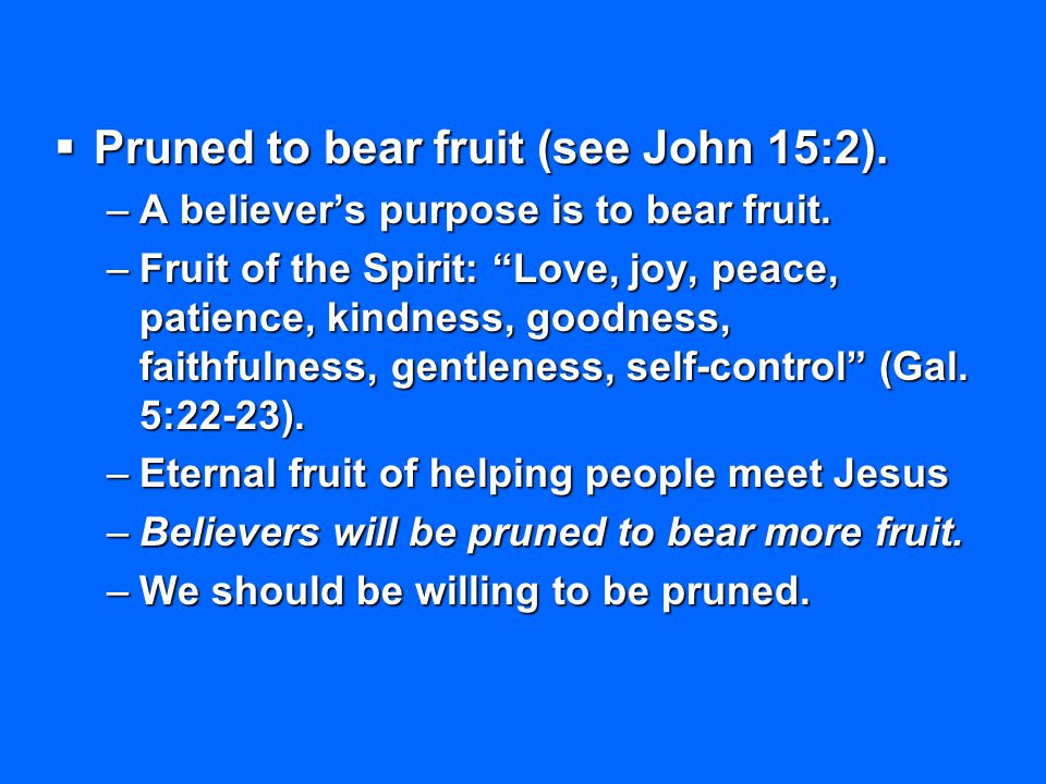 Pruned to bear fruit (see John 15:2).