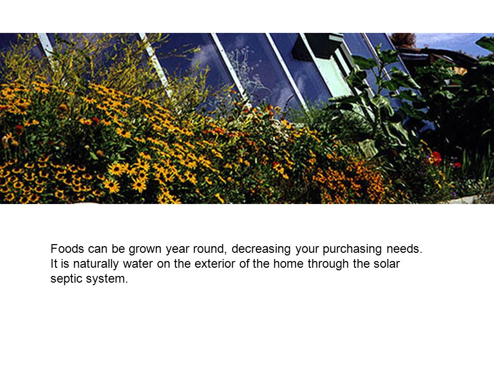 Foods can be grown year round, decreasing your purchasing needs