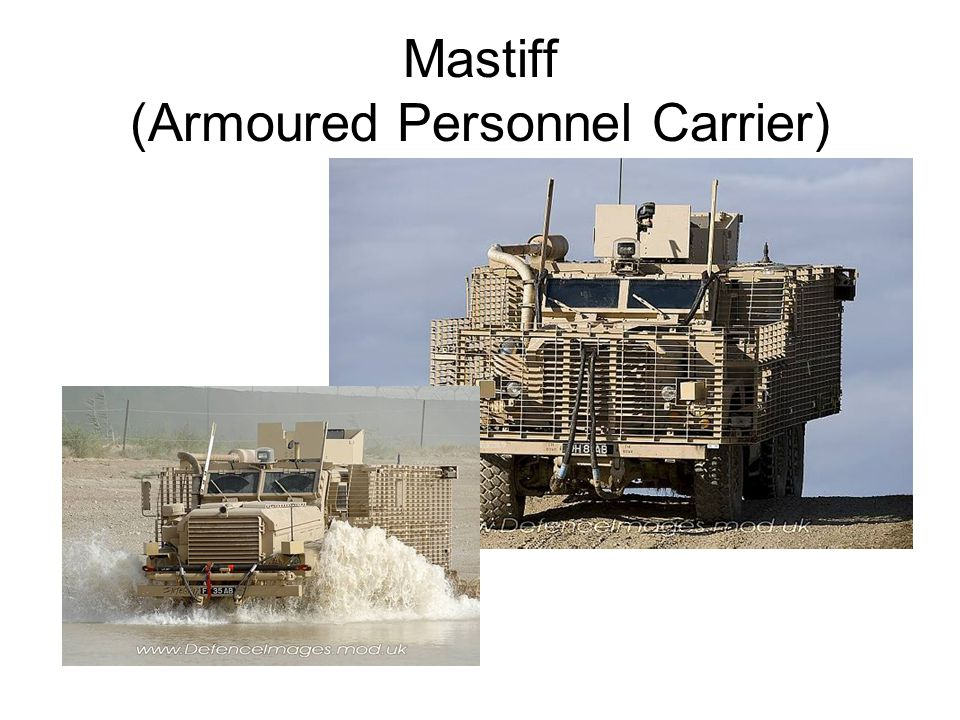 Mastiff (Armoured Personnel Carrier)