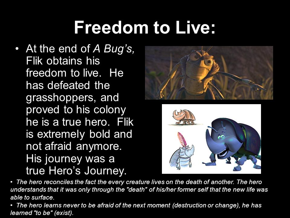 Freedom to Live:
