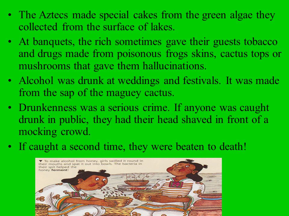 The Aztecs made special cakes from the green algae they collected from the surface of lakes.
