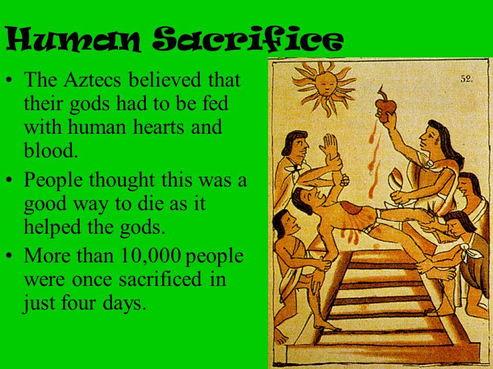 Human Sacrifice The Aztecs believed that their gods had to be fed with human hearts and blood.