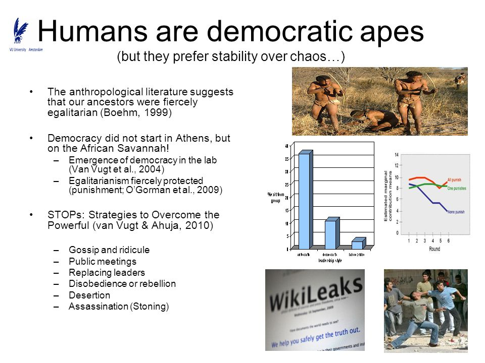 Humans are democratic apes