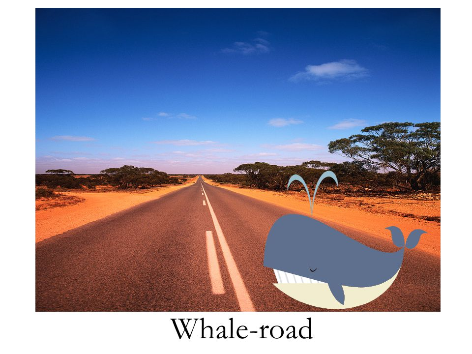 Whale-road