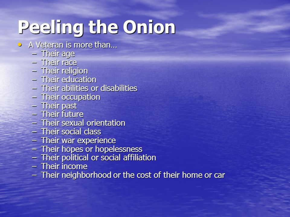 Peeling the Onion A Veteran is more than… Their age Their race