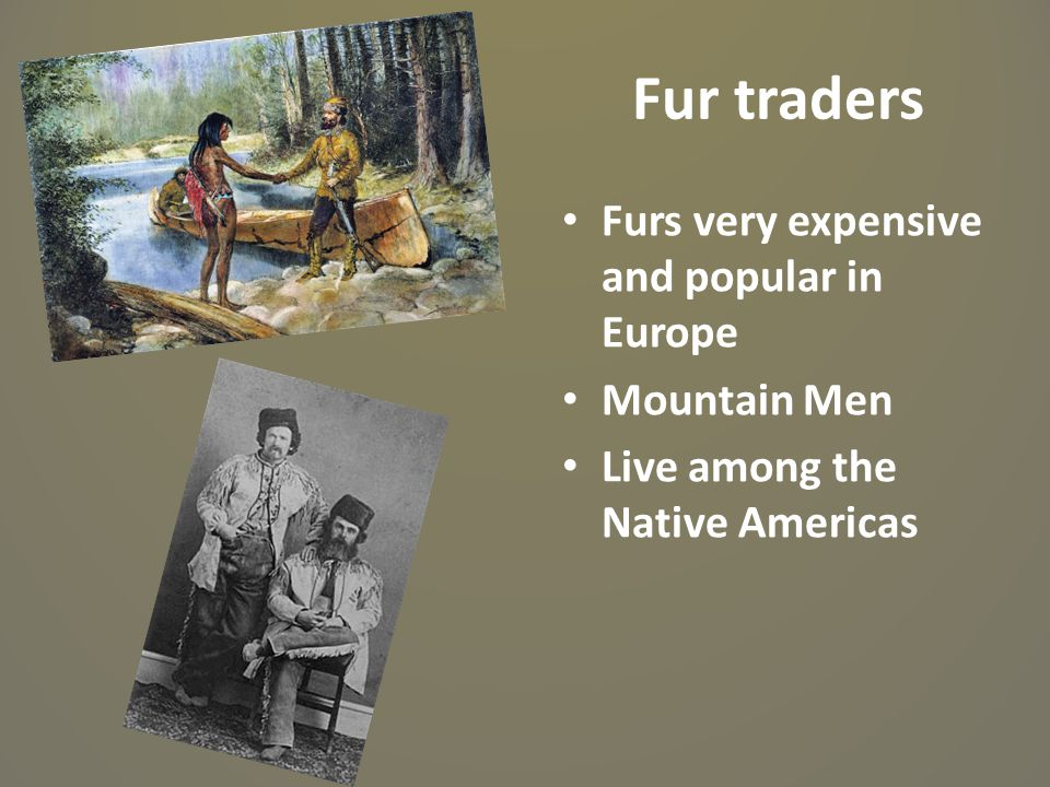 Fur traders Furs very expensive and popular in Europe Mountain Men