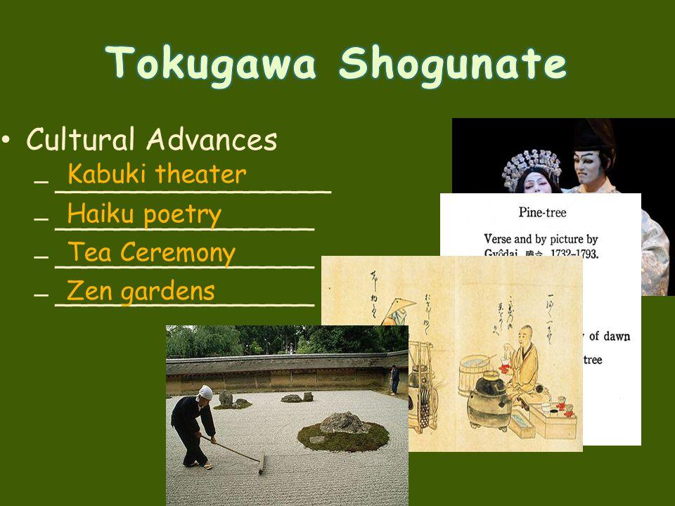 Tokugawa Shogunate Cultural Advances _________________