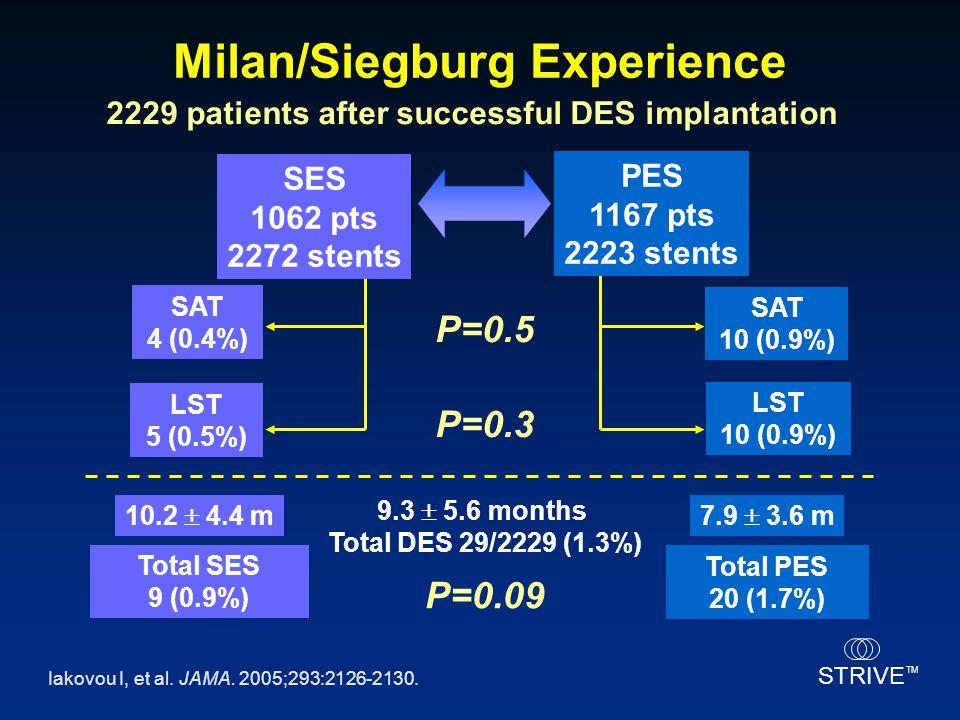 Milan/Siegburg Experience