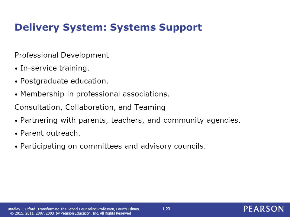 Delivery System: Systems Support