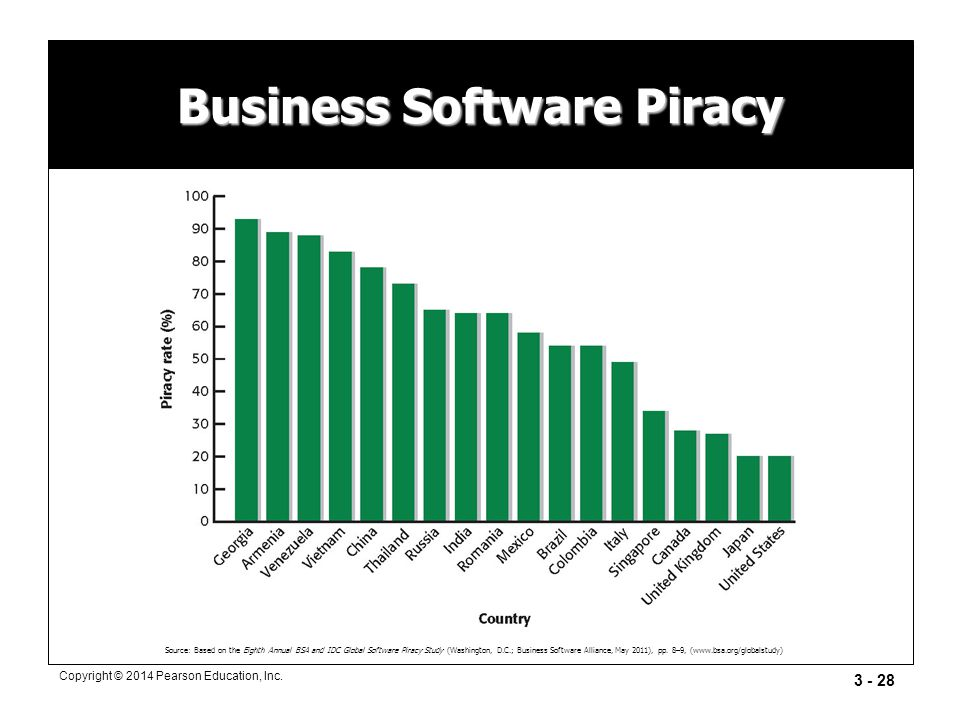 Business Software Piracy