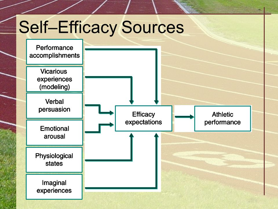 Self–Efficacy Sources