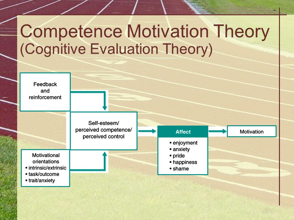 Competence Motivation Theory (Cognitive Evaluation Theory)