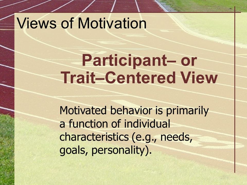 Participant– or Trait–Centered View