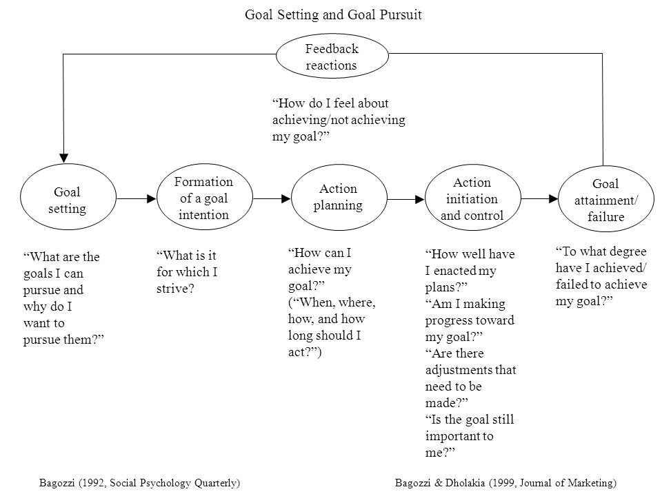 Goal Setting and Goal Pursuit