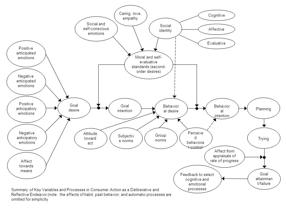 Social and self-conscious emotions Social identity Affective