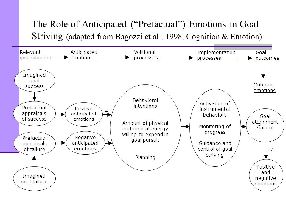 The Role of Anticipated ( Prefactual ) Emotions in Goal Striving (adapted from Bagozzi et al., 1998, Cognition & Emotion)