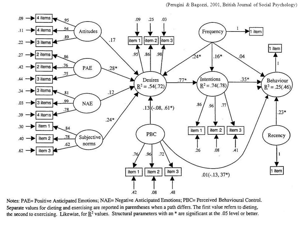 (Perugini & Bagozzi, 2001, British Journal of Social Psychology)
