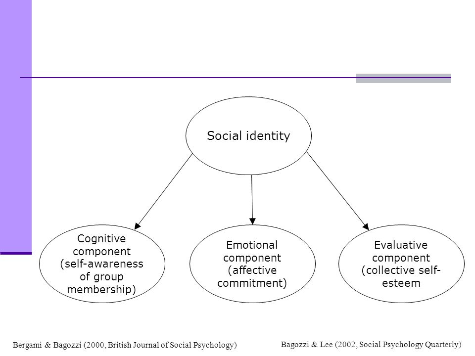 Social identity Emotional component (affective commitment)