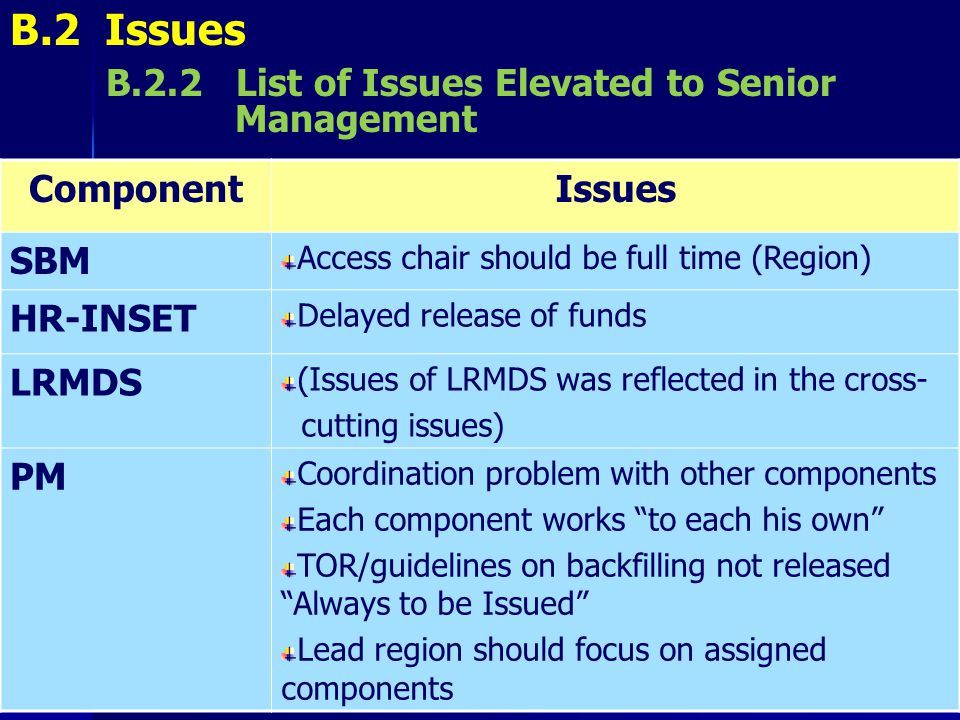B.2 Issues Component Issues SBM HR-INSET LRMDS PM