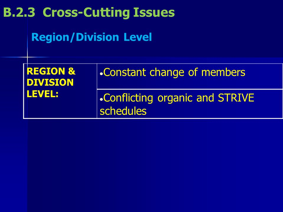 B.2.3 Cross-Cutting Issues Region/Division Level