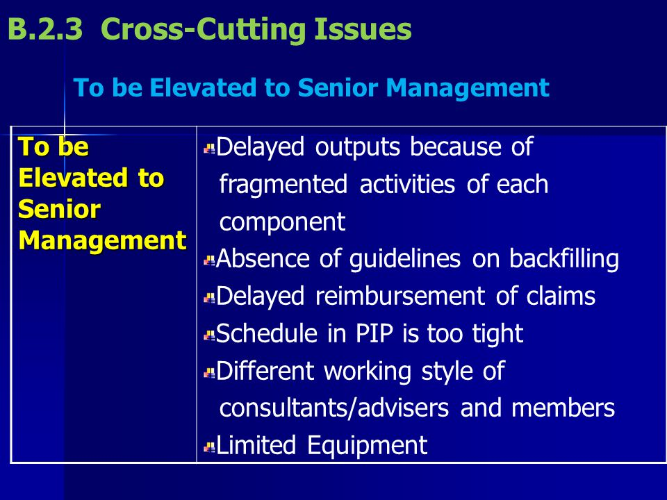 B.2.3 Cross-Cutting Issues To be Elevated to Senior Management