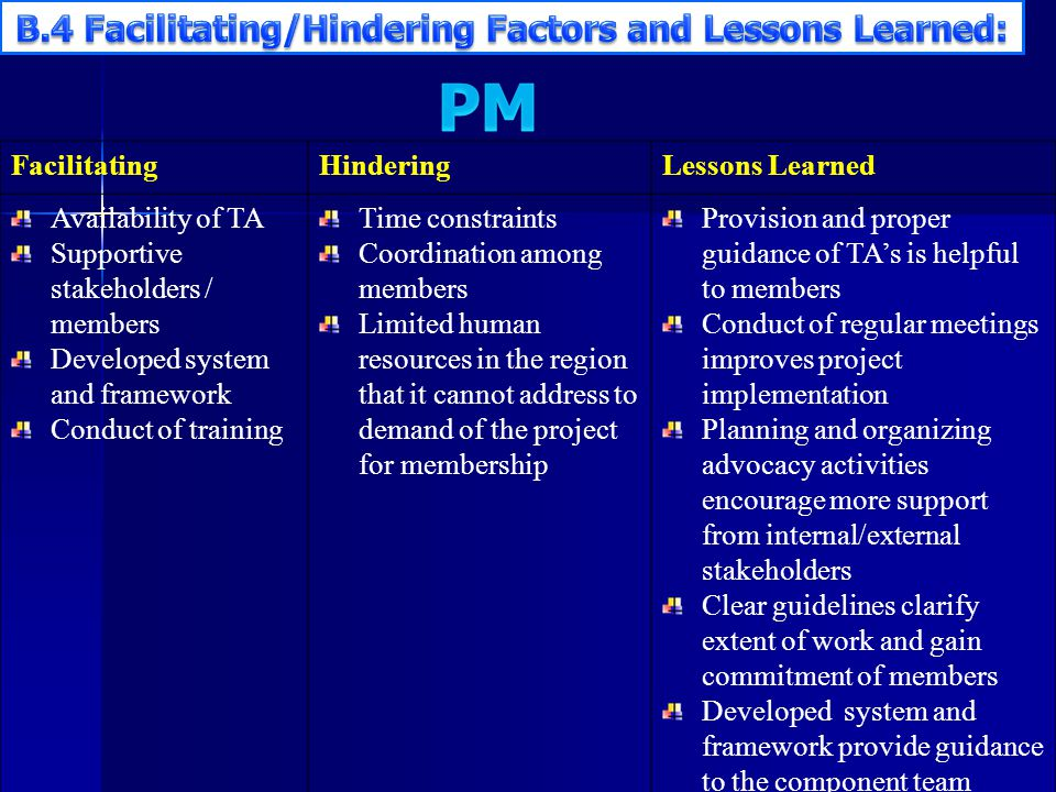 B.4 Facilitating/Hindering Factors and Lessons Learned: