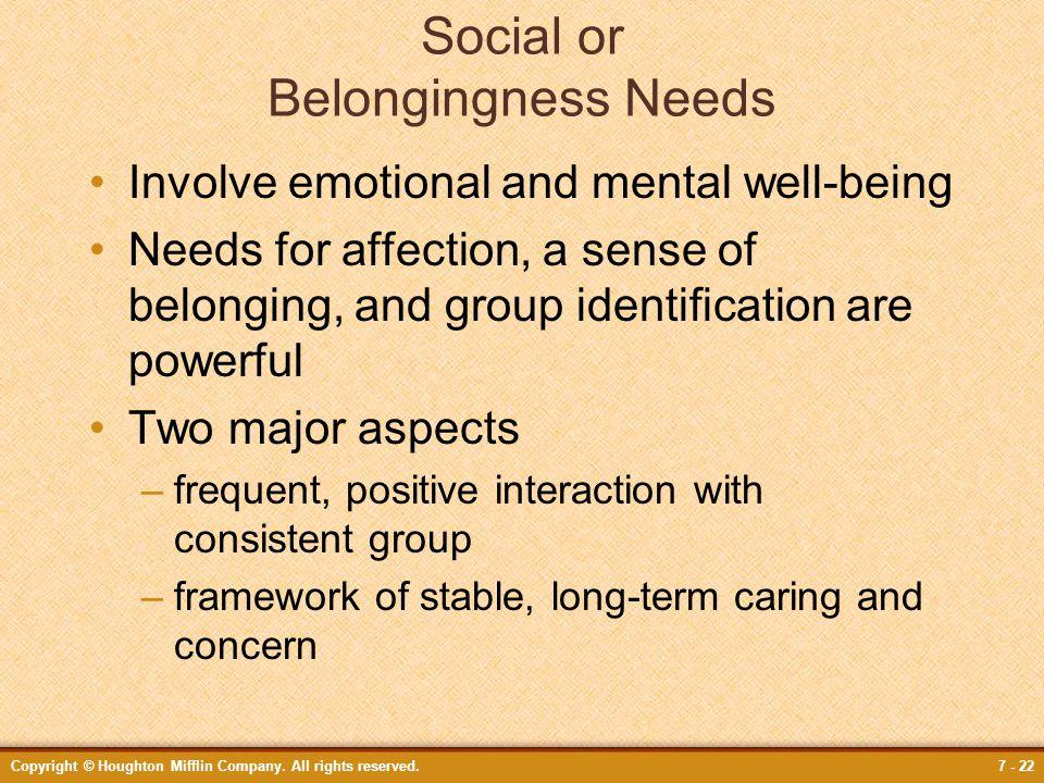 Social or Belongingness Needs