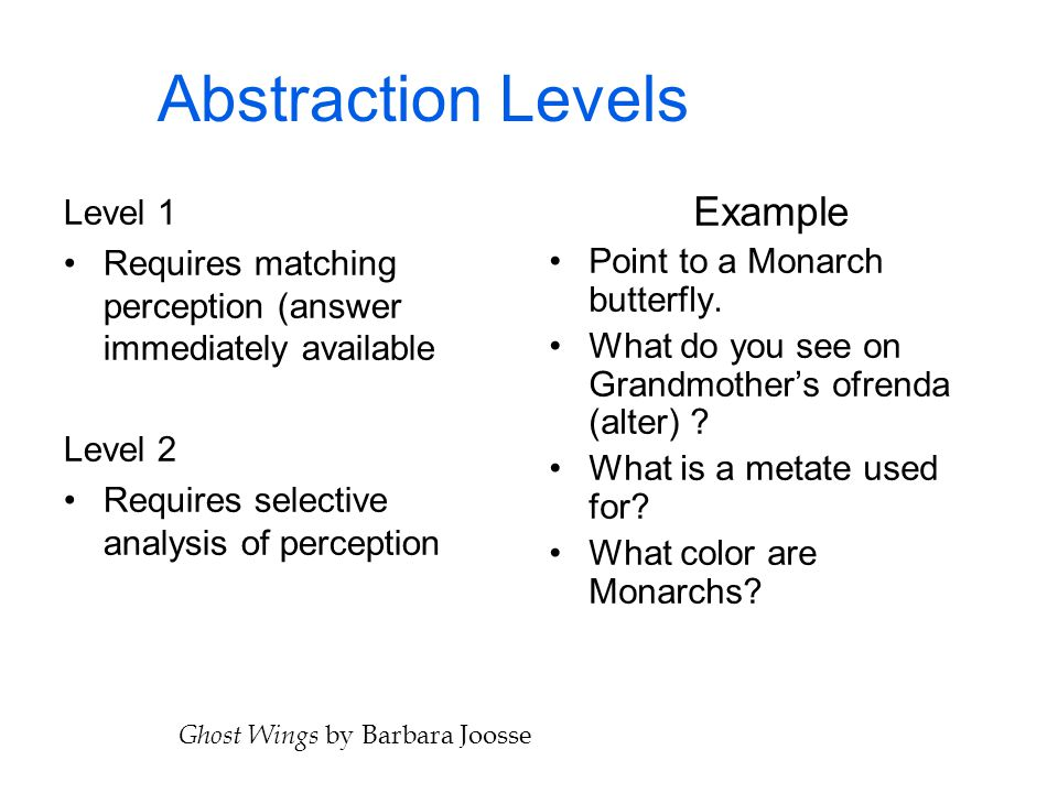Abstraction Levels Example Level 1